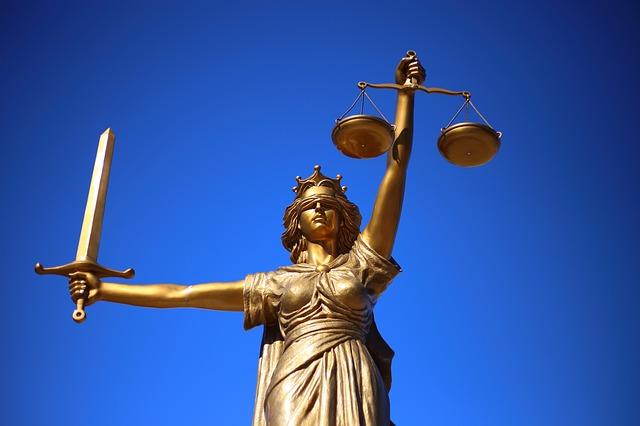 Loi Elan : le conseil constitutionnel a tranché